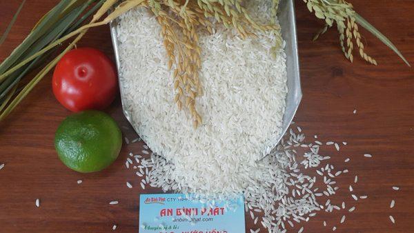 gạo thơm thái